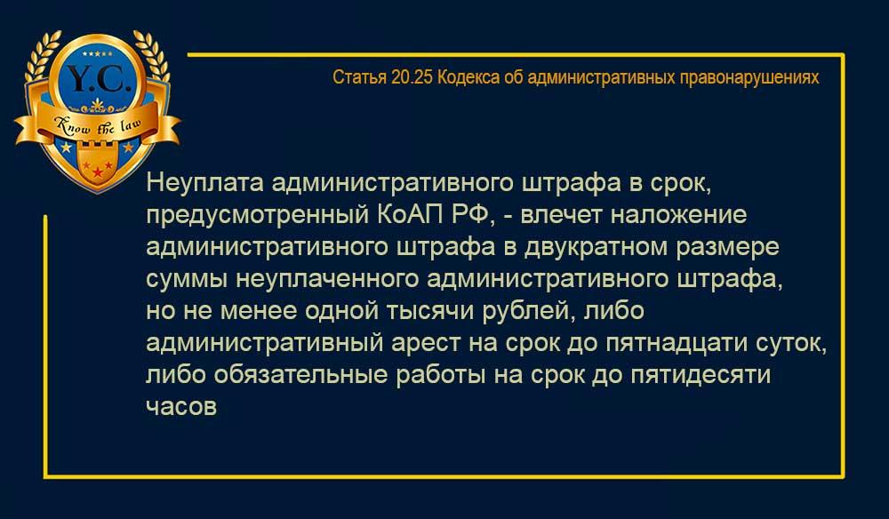 Статья 20.25 КоАП РФ