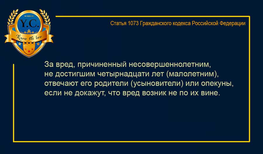 statja 1073 gk rf - Ответственность за вред, причиненный несовершеннолетним